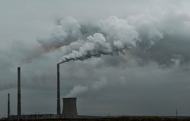Reaction and Response: Global CO2 Emissions Stable in 2019