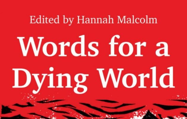 "Shelly Dennison reviews ""Words for a Dying World"" edited by Hannah Malcolm"